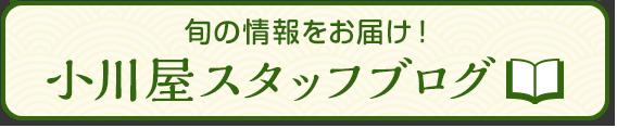 小川屋通信